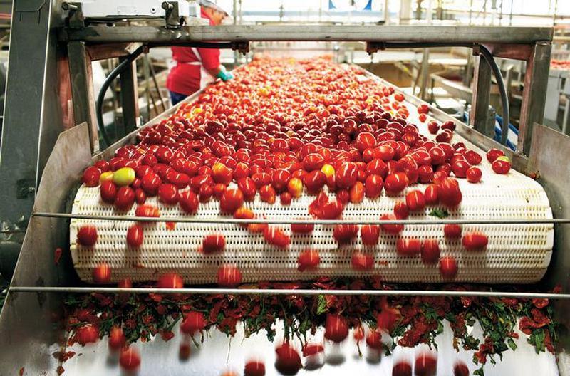 Производство томатной пасты